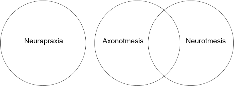 Venn Diagram showing Neurapraxia as a separate circle, with Axonotmesis and Neurotmesis as overlapping circles.